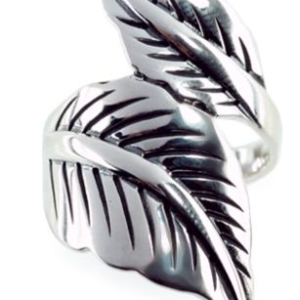 Silver Ring R2113